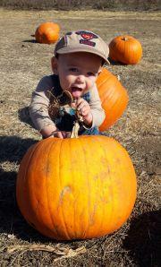 eating pumpkin