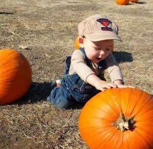 last year big pumpkin